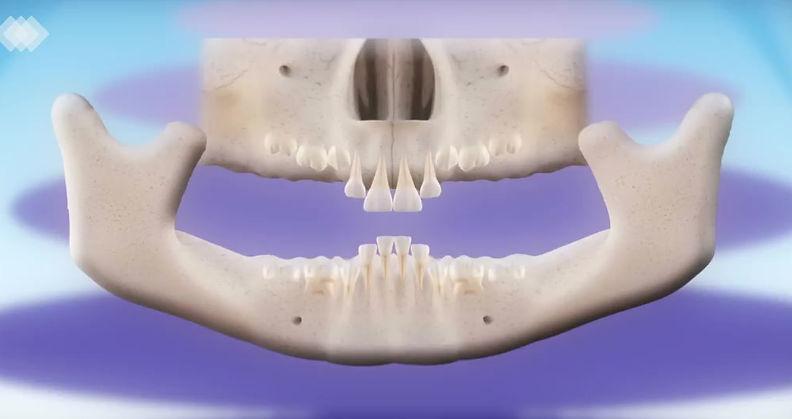 Пароцесс смены зубов