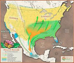 Monarch Migratory Routes