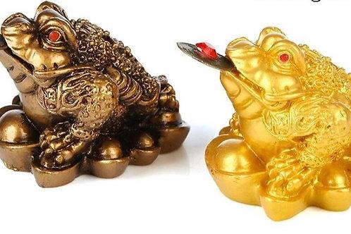 Feng Shui frog for prosperity & good luck