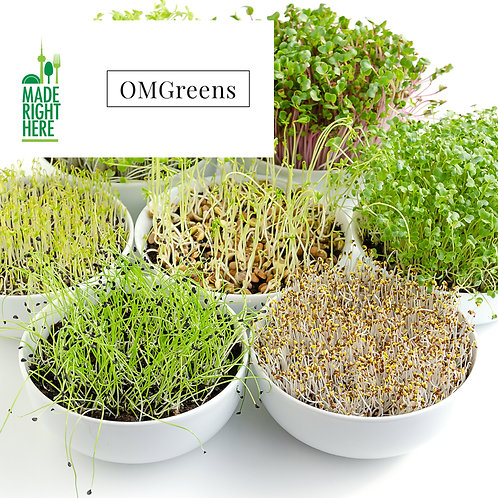 GROW YOUR OWN MICROGREENS BY OMGREENS