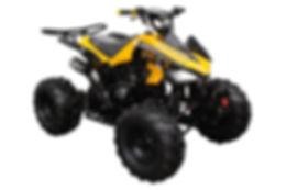 ATV-3125C-2-Y-2.jpg