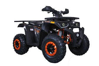 RAPTOR200-GreyFRS.jpg