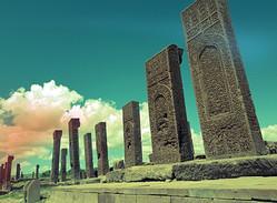 Selcuklu Cemetery / Ahlat