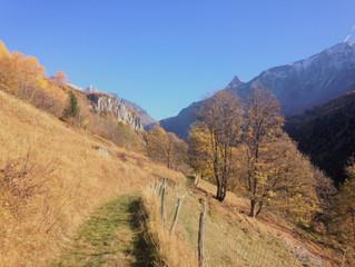 Un automne au top !