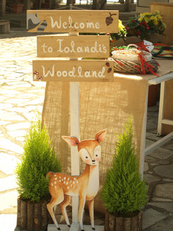 Woodland Themed Cristening