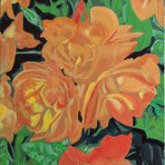 Orange Rose #3