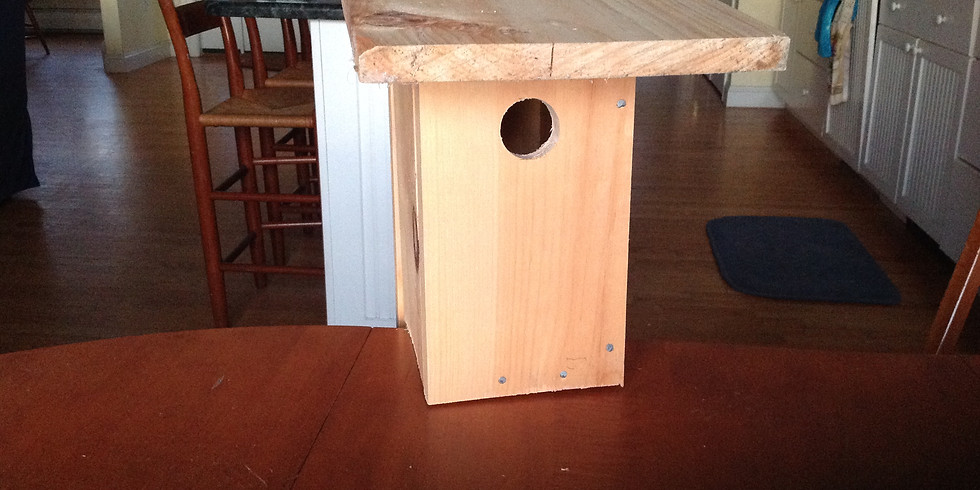 Child Bluebird Nesting Box