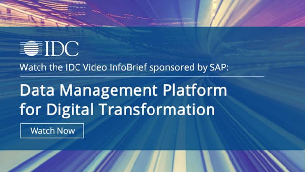 Video InfoBrief for IDC Analyst Firm