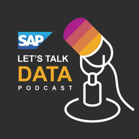 The Let's Talk Data Podcast