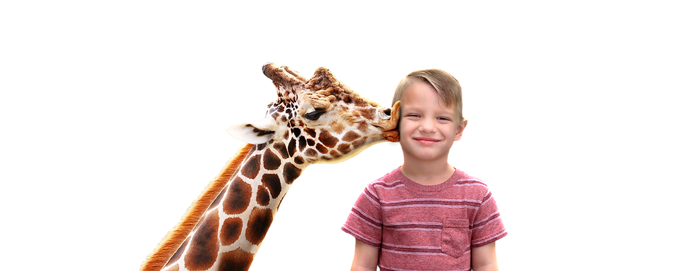 giraffe and kid.png