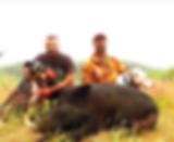 hog kill.PNG