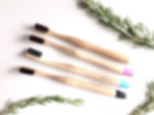 Biodegradable toothbrush, activated charcoal, bamboo toothbrush, compostable, eco-friendly, green living, natboo, green product