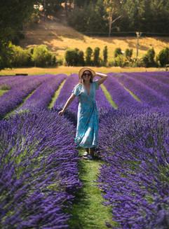 Abbey Lavendar Farm (1 of 1).jpg