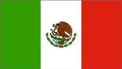 bandera de mexico.jpg