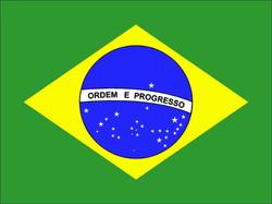 ger-bandera-brasil-8.jpg