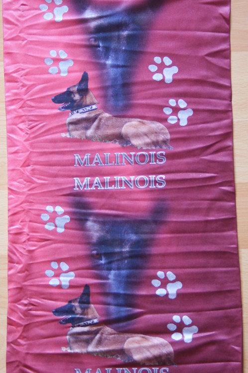 Buff Malinois