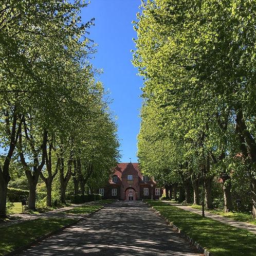 Anneberg Kulturpark allé indgang