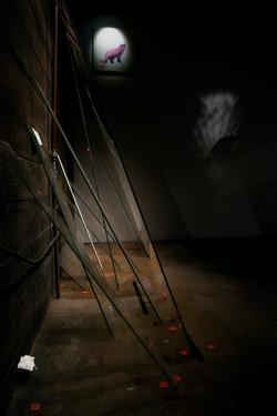 Cielo installation shot
