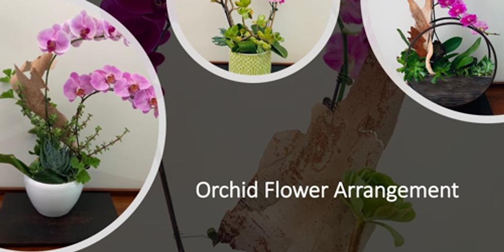 Spring Orchid Flower Arrangement 迎春浪漫蘭花會