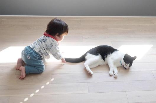 yamamoto23_2.jpg