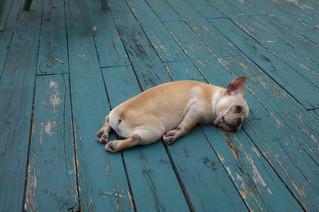 We've Been Resting...