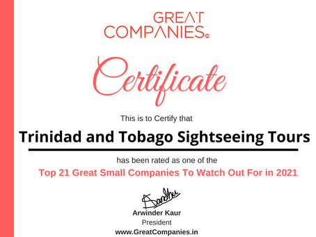 Trinidad and Tobago Sightseeing Tours - Great Small Companies To Watch Out For in 2021