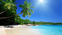 Exotic-Beach.jpg