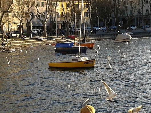 Lecco, il lungolago. barche e cigni.jpg