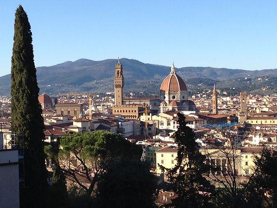 Firenze dall'alto.JPG