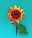 SD Sunflower Oct.jpg