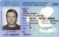 Demerit Points and Fully Licenced Drivers,Off The Hook Paralegal,Windsor,Ontario,Misistry of Transportarion