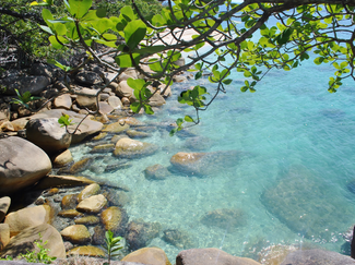 Cairns_Fitzroy Island_1.png
