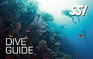 472573_Dive Guide (Small).jpg