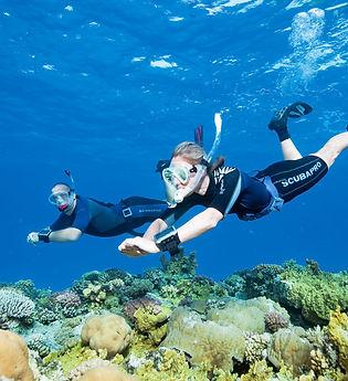 SSI-Diving19.jpg