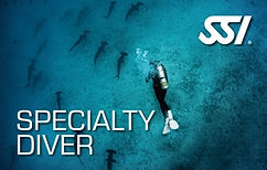 Specialty Diver Bormes Plongee SSI