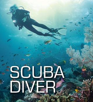 472519_Scuba Diver (Small).jpg