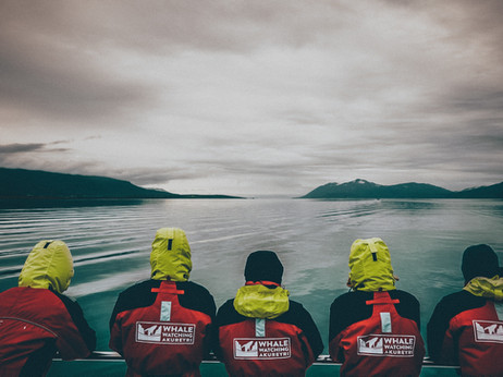 BLOG POST: Swimming Alone - Considering the civic value of marine citizen science