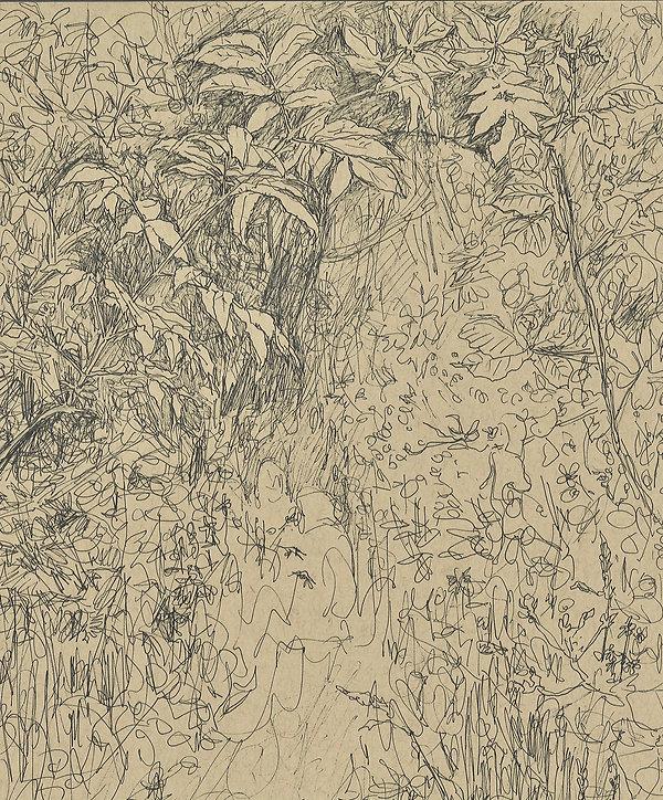 foliage7.jpg