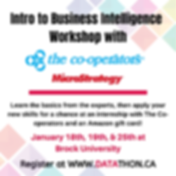 Intro to Business Intelligence in MicroS