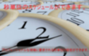 プロフェッショナルな配信サービスに要求される秒単位の設定が簡単にできます。