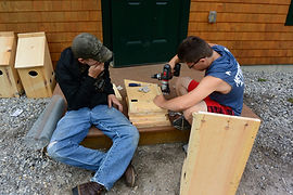Students research prime wood duck habitat and create nesting boxes to support the population