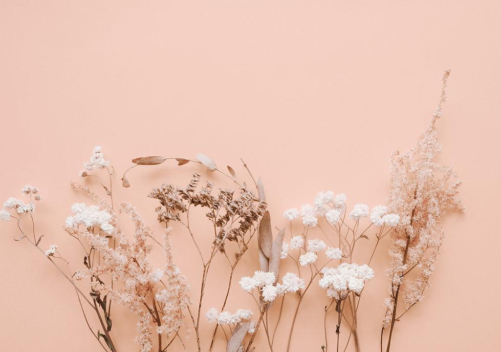 Trockenblumen vor rosefarbener Wand