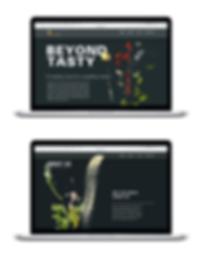 webmockup.png