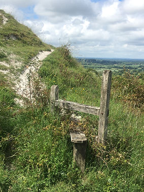 Path on the Sussex Downs