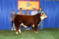 2014-Iowa-Star--2014-Ne-State-Fair.jpg