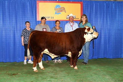 2014-Iowa-Star--2014-Ne-State-Fair.jpg