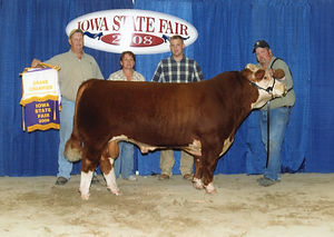 2008-Clyde--Iowa-State-Fair-Grand-Champ-