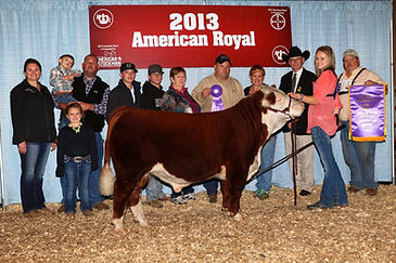 iowa ks royal 2013.jpg