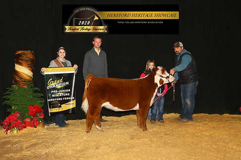 Basal Hereford Heritage 2020.jpg
