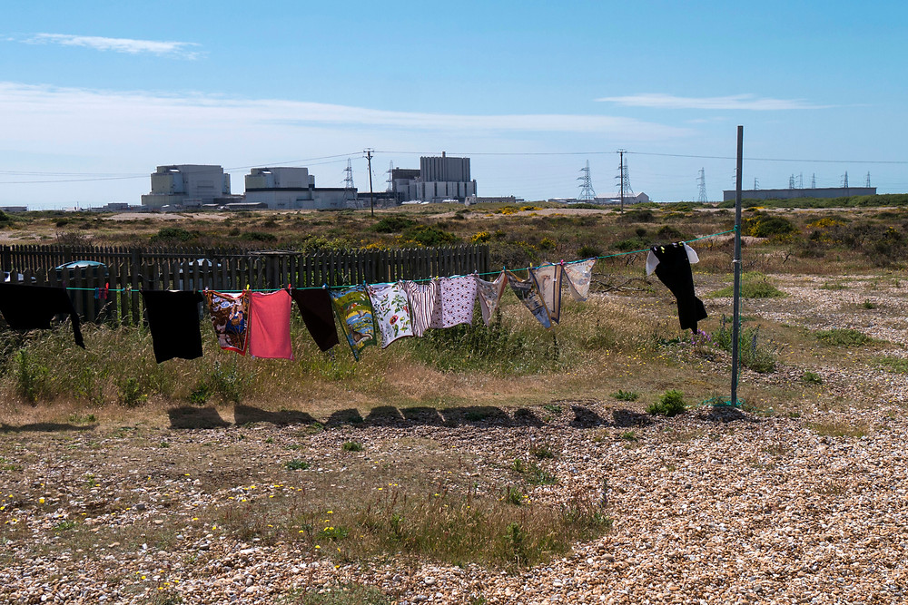 Dungeness_June2015_008.jpg